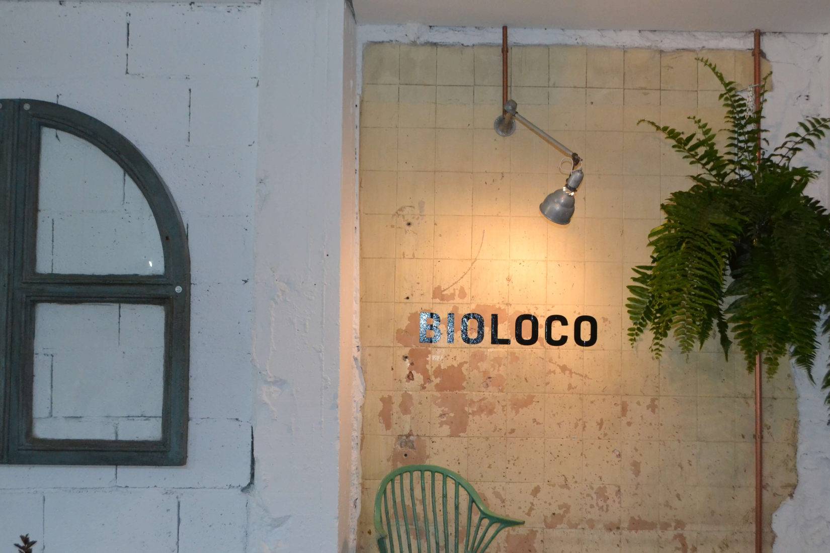 Bioloco Pared
